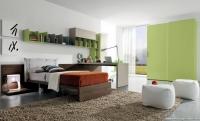Yeşil Renk Genç Odası Fikirleri