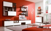 Turuncu Duvarlı Salon Dekorasyonu